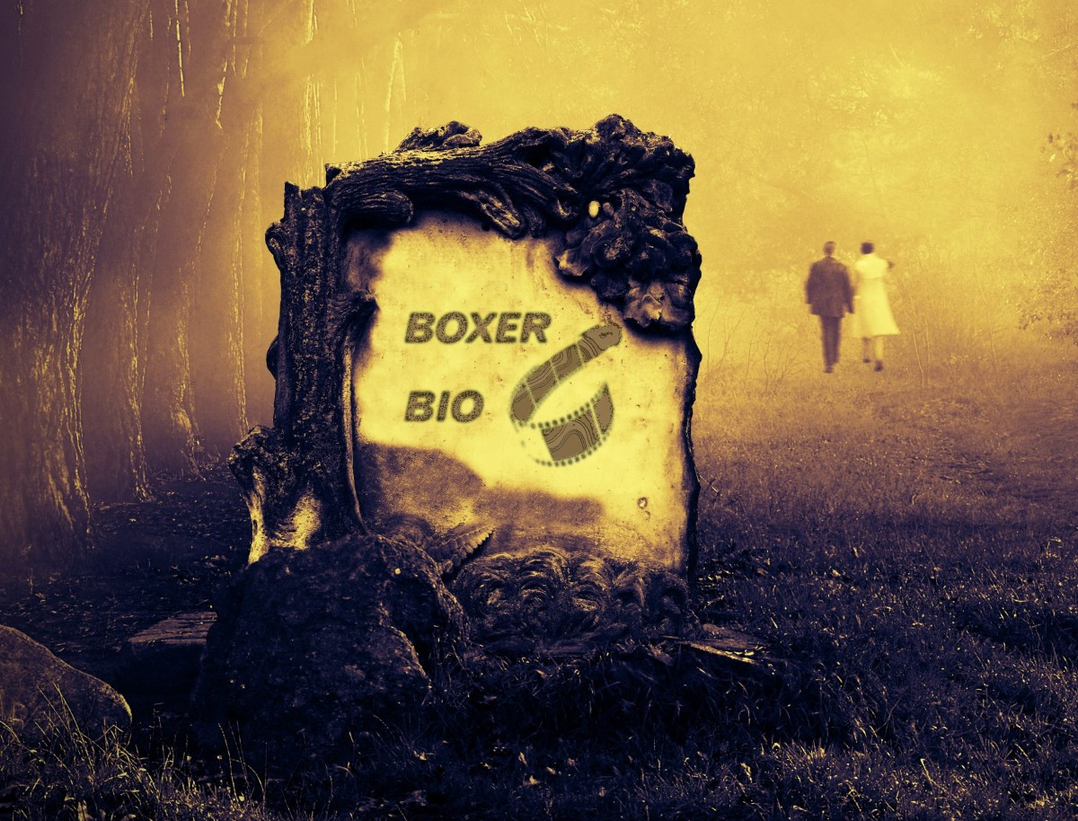 Boxer Bio lægges i graven. Foto: Shutterstock.com / recordere.dk