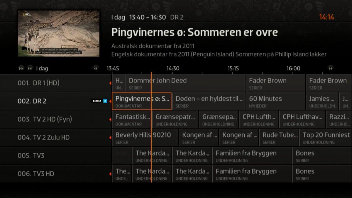 Foto: recordere.dk